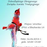 TURNIEJ KARATE TRADYCYJNEGO na X-lecie Dolnośląskiego Okręgowego Związku Karate Tradycyjnego